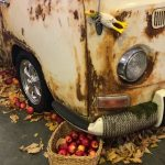 Car Rust Protection